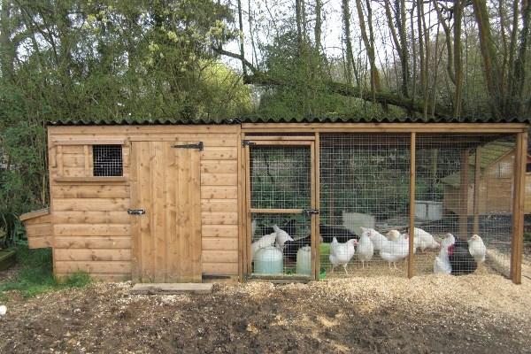 목장이있는 목제 닭장