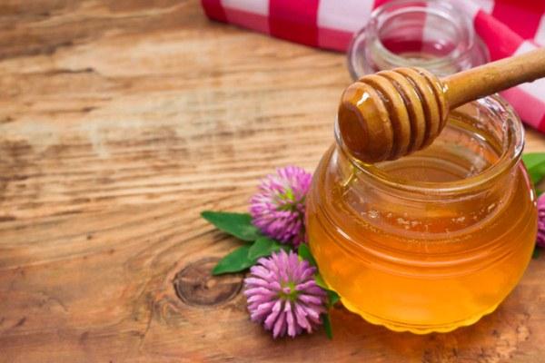 클로버 꿀