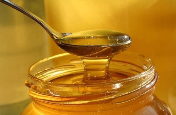 고수풀 꿀