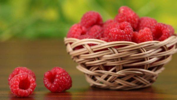 나무 딸기 품종